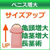 男性泌尿器科人気No.1ペニス増大のイメージ